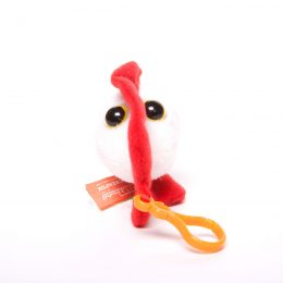 picture of chicken pox keychain