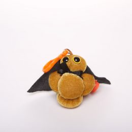 picture of MRSA key chain