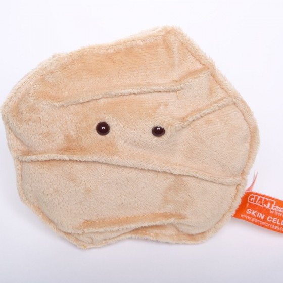 picture of skin cell toy