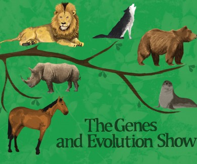 The Genes and Evolution Show