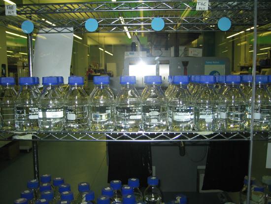 Image of glass bottles